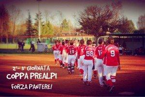 redP team-01